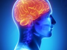 """The Future Model of Health Care Needs to be """"Brain Care"""""""