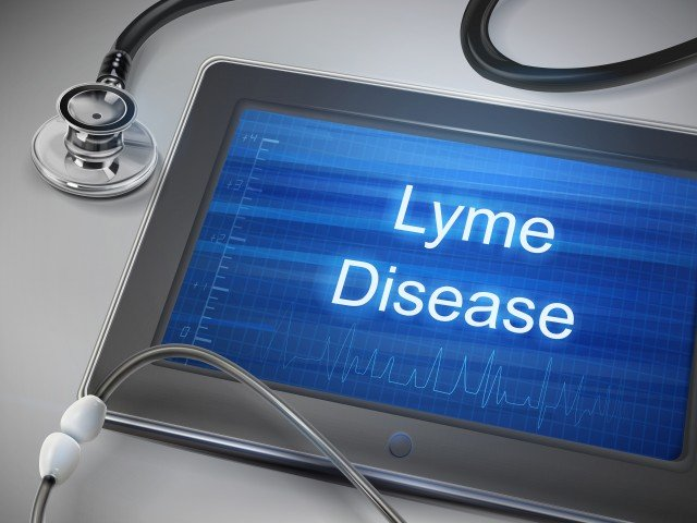Lyme – It's Time for a New Approach